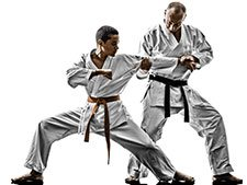 Waterville Martial Arts Gallery